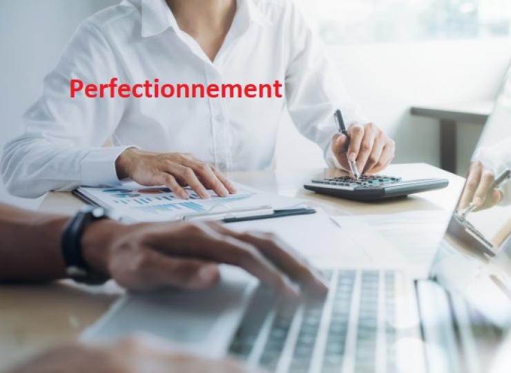 Perfectionnement Excel