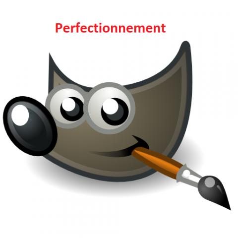gimp perfectionnement