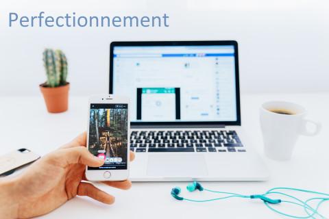perfectionnement réseaux sociaux