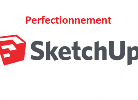perfectionnement google sketchup
